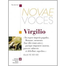 Novae voces. Virgilio