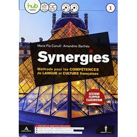 Synergies 1