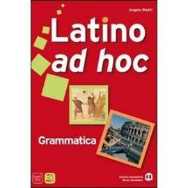 Latino ad hoc. Grammatica
