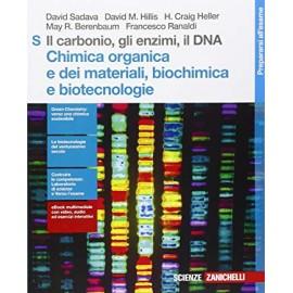 Il carbonio, gli enzimi, il DNA S. Chimica organica e dei materiali, biochimica e biotecnologie