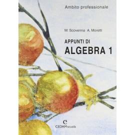Appunti di algebra 1